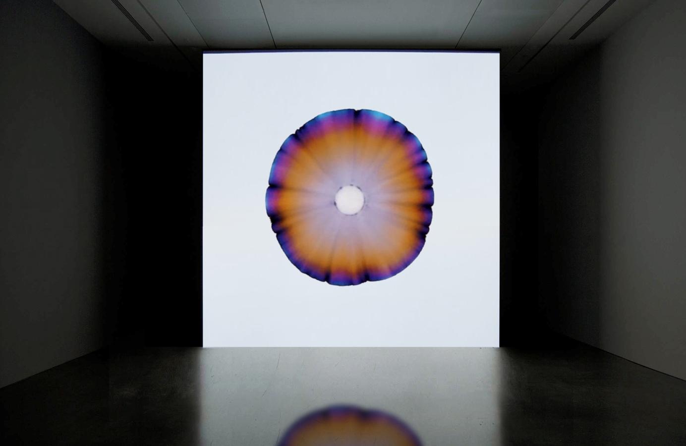 'Time Only Exists So Not Everything Happens At Once', 2014 | Troika (Eva Rucki, Sebastien Noel, Conny Freyer)